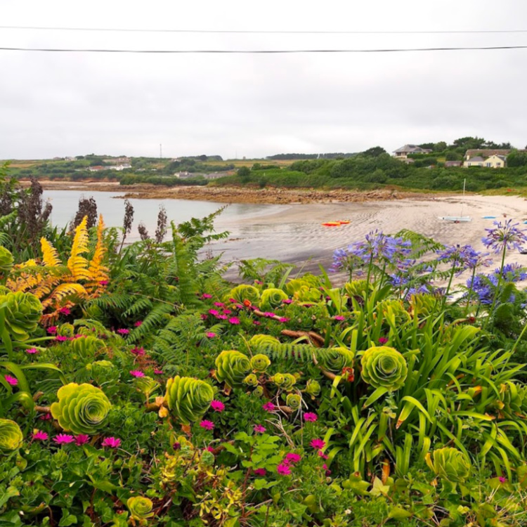 Abbey Gardens Tresco Scilly Isles with David and Angela Solomon of travel blog Seen by Solomon