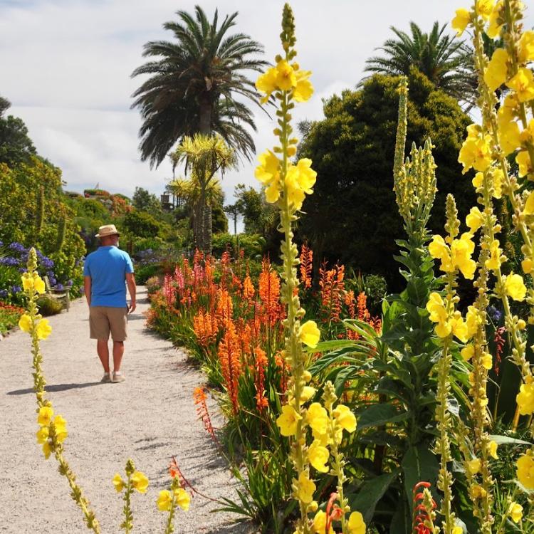 The Abbey Gardens, Tresco – Scilly Isles heaven!
