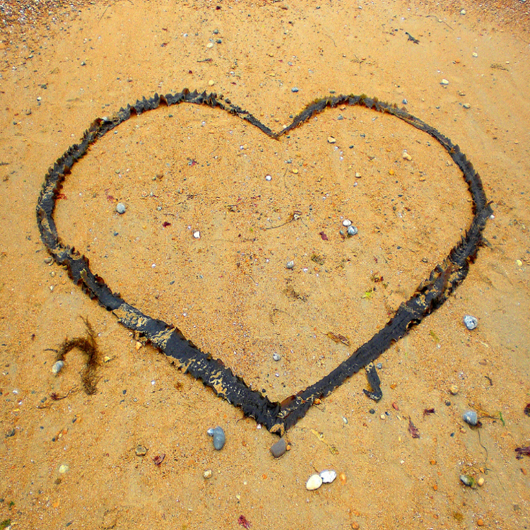 seaweed heart found on Brighton beach UK with Seen by Solomon travel blog, spotted 3