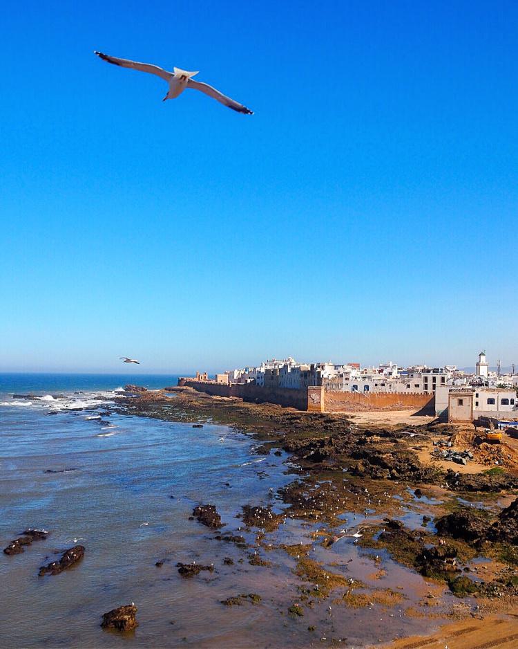 Essaouira, Morocco with David & Angela Solomon travel blog Seen by Solomon