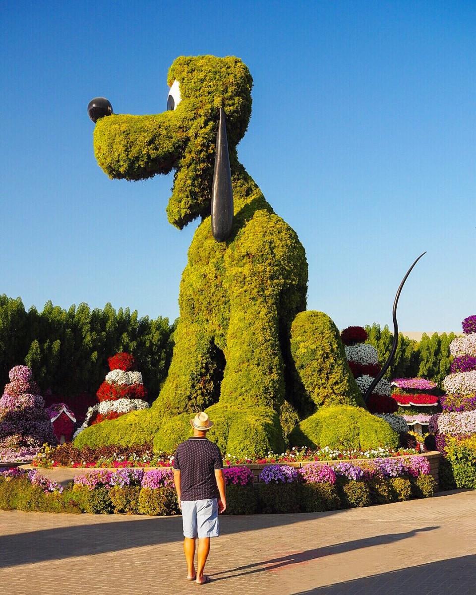 Miracle Garden Dubai with Seen by Solomon travel blog