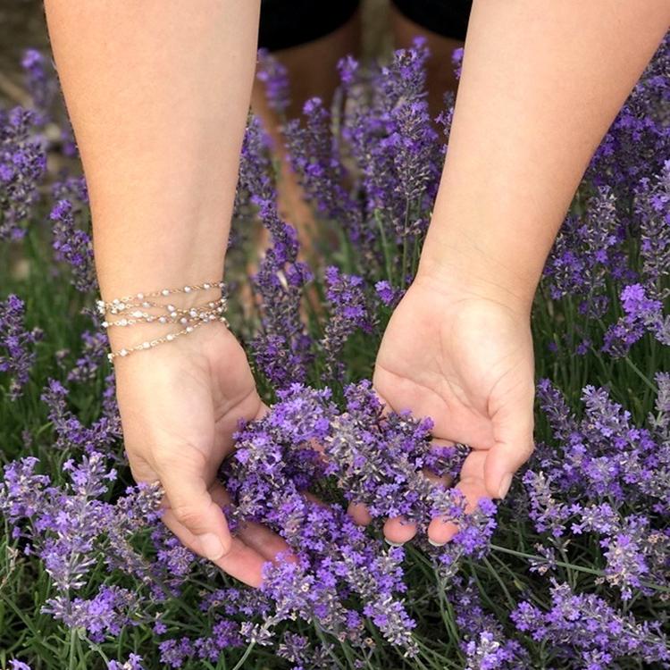 Lordington Lavender Sussex UK wild flower fields with Seen by Solomon travel lifestyle blog