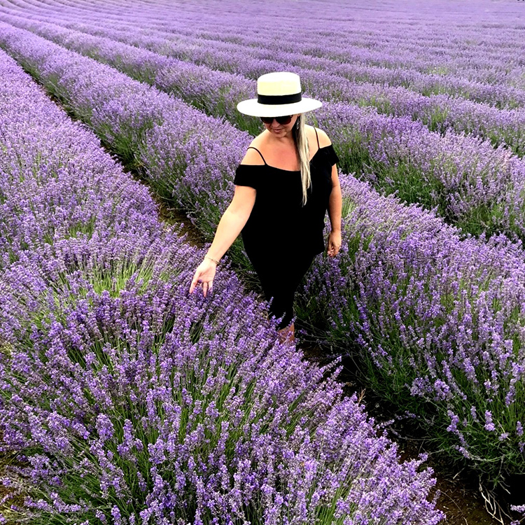 Lordington Lavender Sussex UK wild flower fields with Seen by Solomon travel lifestyle blog