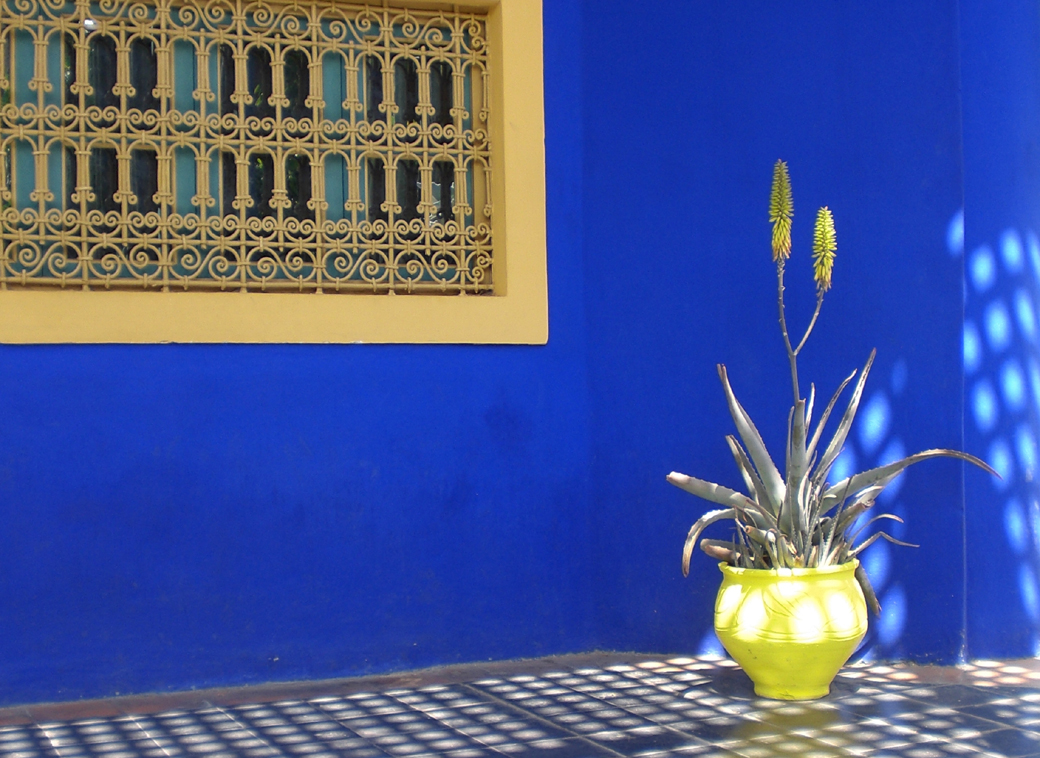 Yves St Laurent's garden in Marrakech, Morocco, with Seen by Solomon travel blog